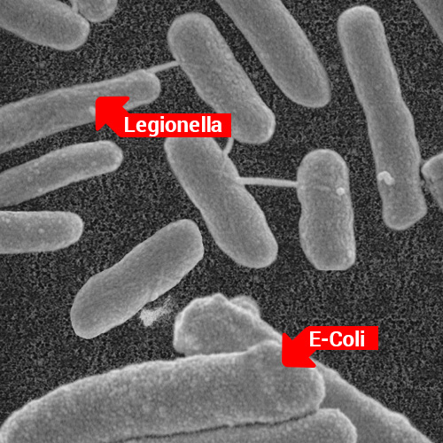 imagen microscopica de membrana de ultrafiltracion